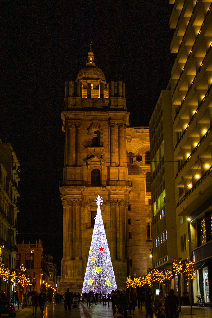 Beautiful decorated Christmas tree in center of Malaga