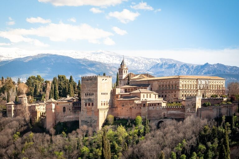 View of the Alhambra palace of Granada