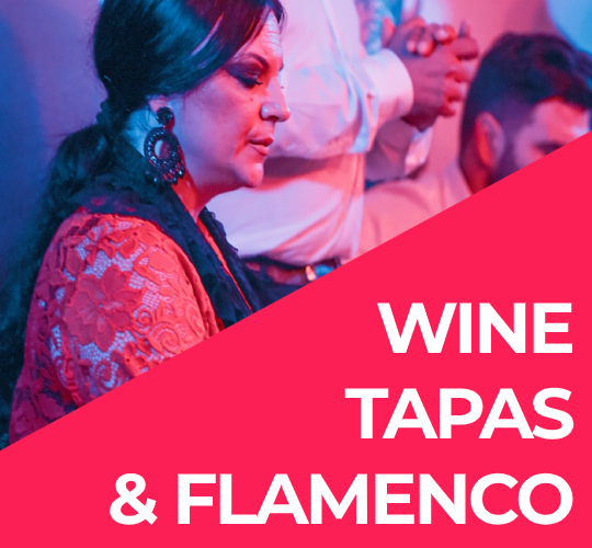 WINE TAPAS AND FLAMENCO SEVILLE