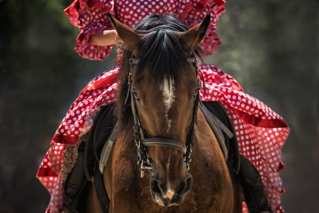 Fairs & Traditional Festivals: Andalusian people's essence