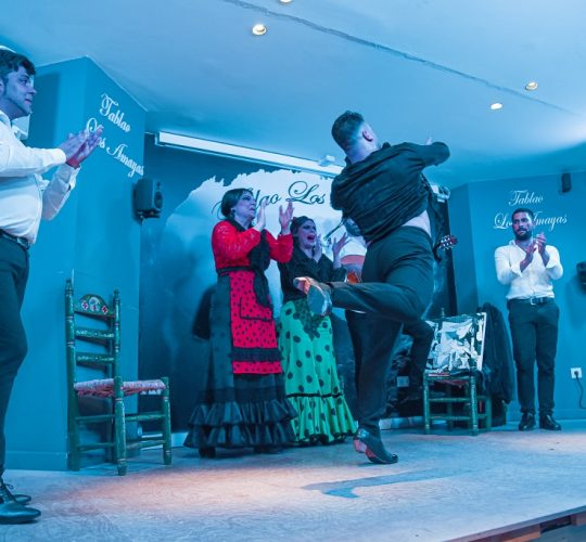 Flamenco show in a famous flamenco place