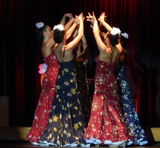 Flamenco performers