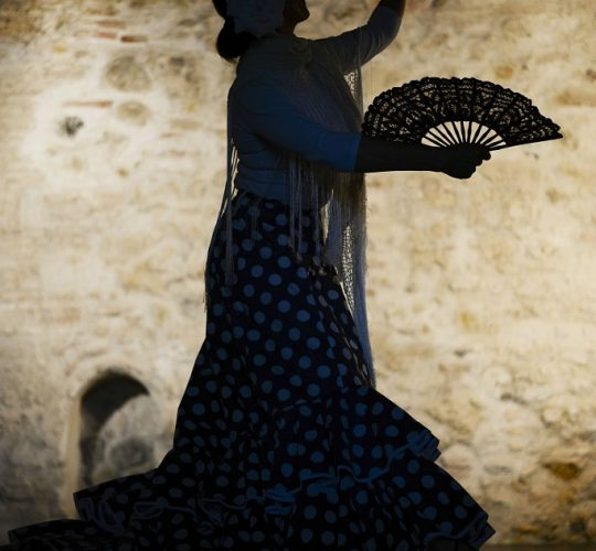 flamenco-dancer-authentic-show