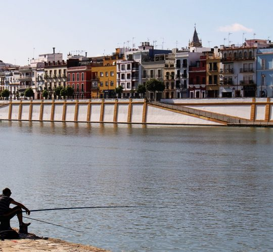 People fishing in the Triana bridge area